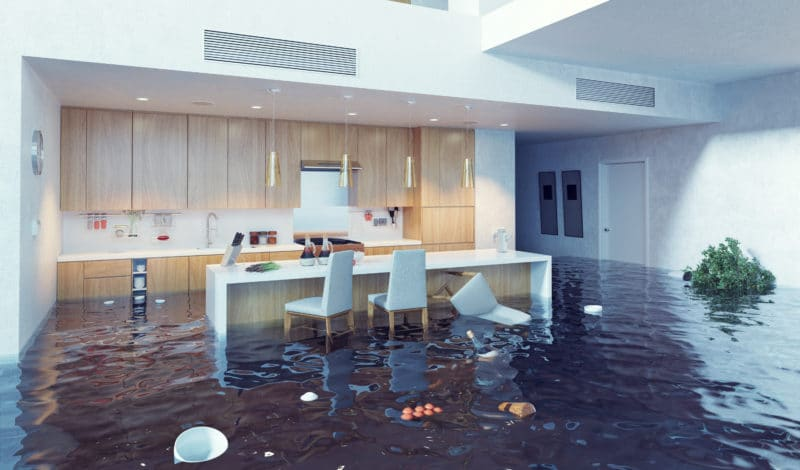 Water Damage Services WA